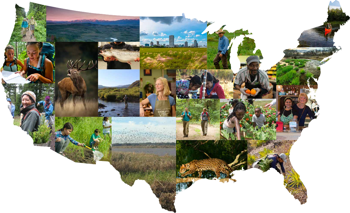 The Conservation Fund 2017 Annual Report